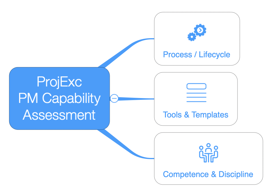 ProjExc PM Capability Assessment. Process, Tools, Competence